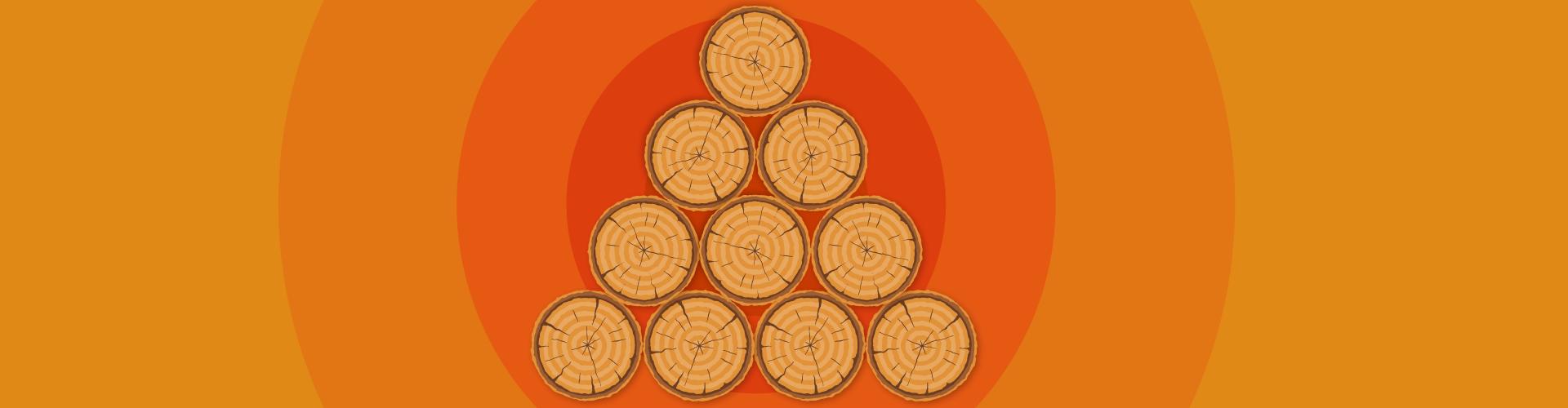 Produção de Papel e Celulose – Como funciona?
