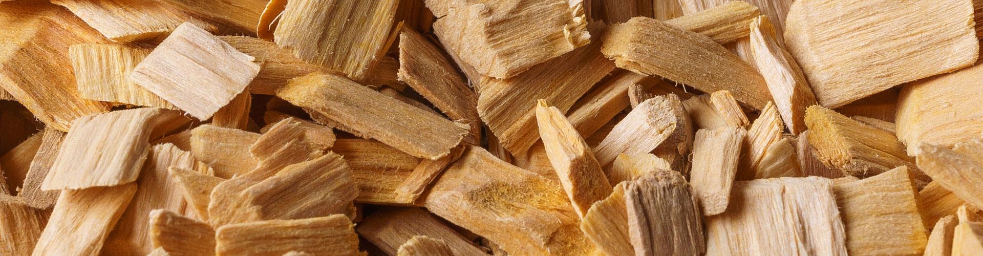 Biodigestores e a Biomassa de Cavacos de Madeira
