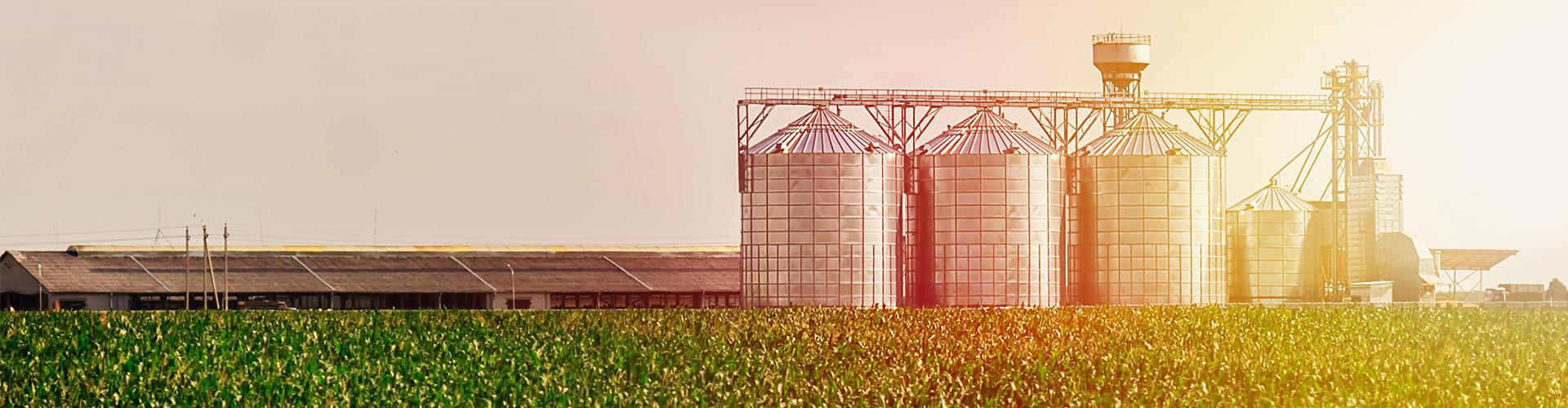 Medição de Nível em Tanques na indústria de Alimentos: Saiba Como Garantir a Eficiência e Eliminar Perdas
